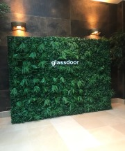 Artificial Living Wall for Glassdoor