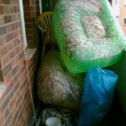 Pest Control Waste Services